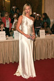 Charlize Theron royaltyfri foto
