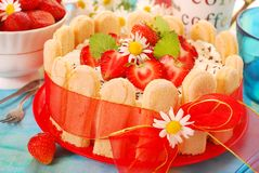 Charlotte cake with strawberry Stock Images