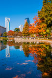 Charlotte city skyline autumn season Stock Photography