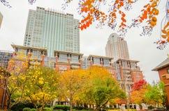 Charlotte city skyline autumn season stock images