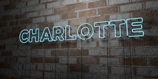 CHARLOTTE - Glowing Neon Sign on stonework wall - 3D rendered royalty free stock illustration Stock Photos