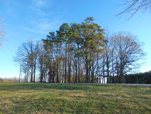 Charlotte, Nord-Carolina Lizenzfreie Stockfotos
