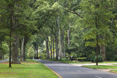 Charlotte North Carolina Queens Road West Royalty Free Stock Photos