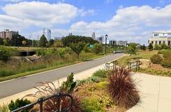 Charlotte Skyline from Midtown Park stock photos