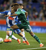 Charly Musonda Junior of Real Betis. During a Spanish League match against RCD Espanyol at the Power8 stadium on March 3, 2016 in Barcelona, Spain Stock Photo