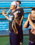 Charmör av ormen på dragning Arkivfoto