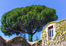 The charm of the Sorrentina peninsula Royalty Free Stock Images