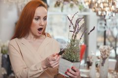 Charma kvinnan som tycker om shoppa det hemmastadda dekorlagret arkivbilder