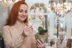 Charma kvinnan som tycker om shoppa det hemmastadda dekorlagret royaltyfri foto