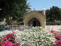 Charmant bloemendecor, Eiland Kreta, Griekenland royalty-vrije stock foto