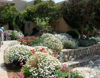 Charmant bloemendecor, Eiland Kreta, Griekenland Stock Fotografie