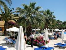 Charmant bloemendecor en machtige palmen op het strand, het Eiland Kreta, Griekenland Stock Foto