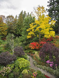 Charmant veelkleurig bloembed en voetpad Royalty-vrije Stock Afbeelding