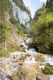 Charmante bergstroom in de vallei dichtbij Schladming, Oostenrijk stock foto