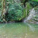 Charmante die helling met klimop en mos met stromende waterval wordt behandeld royalty-vrije stock afbeelding