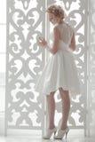 Charmante mooie bruid royalty-vrije stock foto's