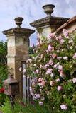 Charmante tuin royalty-vrije stock afbeelding