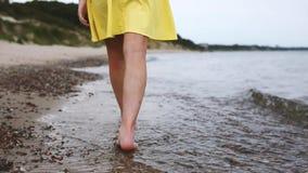 Charmante vrouw op het strand stock video