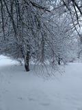 Charme en de winter stock foto