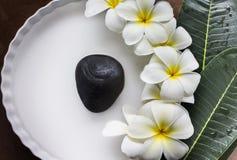 charme et plumeria harmonieux ou frangipani de fleurs blanches dans le whi images libres de droits