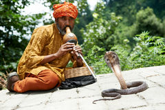 Charmer of snake in India. Indian Snake charmer adult man in turban playing on musical instrument before snake at a basket Stock Images