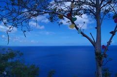 Charmes de coeur sur un arbre photographie stock libre de droits