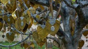 Charmes de prière pendant d'un arbre Image stock