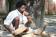 Charmeur de serpent, Inde Image libre de droits