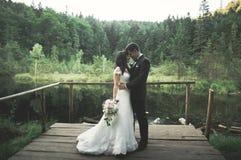 Charmig brud, elegant brudgum på landskap av berg och solnedgång på sjön ursnyggt bröllop för par Fotografering för Bildbyråer