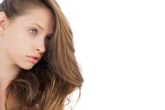 Charmig brunettmodell som poserar att se bort Arkivfoto