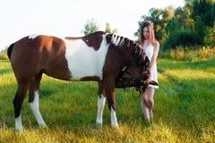 Charmig flicka i den vita klänningen med hästen i fältet Arkivfoton