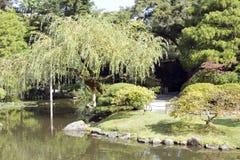Charmig japanträdgård Royaltyfri Bild