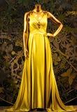 Charmig klänning med guld- färg Royaltyfri Fotografi