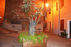 Charmig medeltida stad Castelsardo av Sardinia på natten arkivbilder