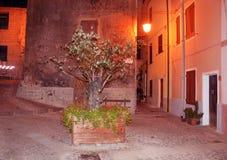 Charmig medeltida stad Castelsardo av Sardinia på natten Royaltyfri Foto