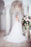 Charmig ung brud i lyxig bröllopsklänning Nätt flicka, fotostudion arkivbilder