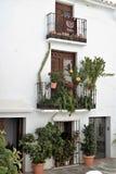Charmiga balkonger som dekoreras med växter och krukor i Frigiliana, spansk vit by Andalusia Arkivfoton