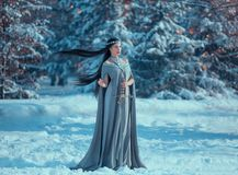 Charming attractive lady in snowy forest, militant elf princess with black long flying hair holds sword, loose gray warm stock photo