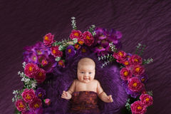 Charming baby in basket with flowers, purple background Stock Image