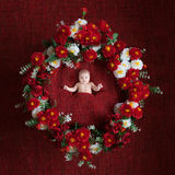Charming baby in basket with flowers, red background Stock Photos