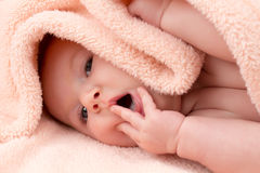 Charming baby girl posing Stock Photography