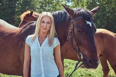 A charming woman standing with a brown horse. Charming beautiful blonde wearing a white blouse and jeans standing with a horse in a countryside Stock Photo