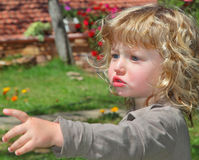 Charming blond and curly little boy Royalty Free Stock Photography