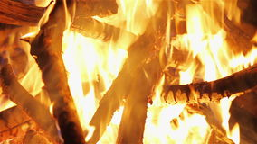 Charming bonfire flame blazing in the night stock footage