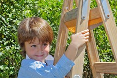 The charming boy on step-ladder Stock Photos
