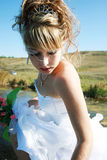 Charming bride Stock Photography