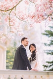 Charming bride and handsome groom under blossoming magnolia tree, leaning on antique baluster Royalty Free Stock Photos