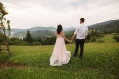 Charming bride hug her handsome groom in mountains. Beautiful wedding couple walk. Green gackground.  stock photo