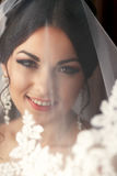 The charming bride is under veil.  Royalty Free Stock Photo
