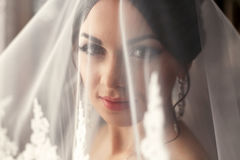 The charming bride is under veil.  Royalty Free Stock Images